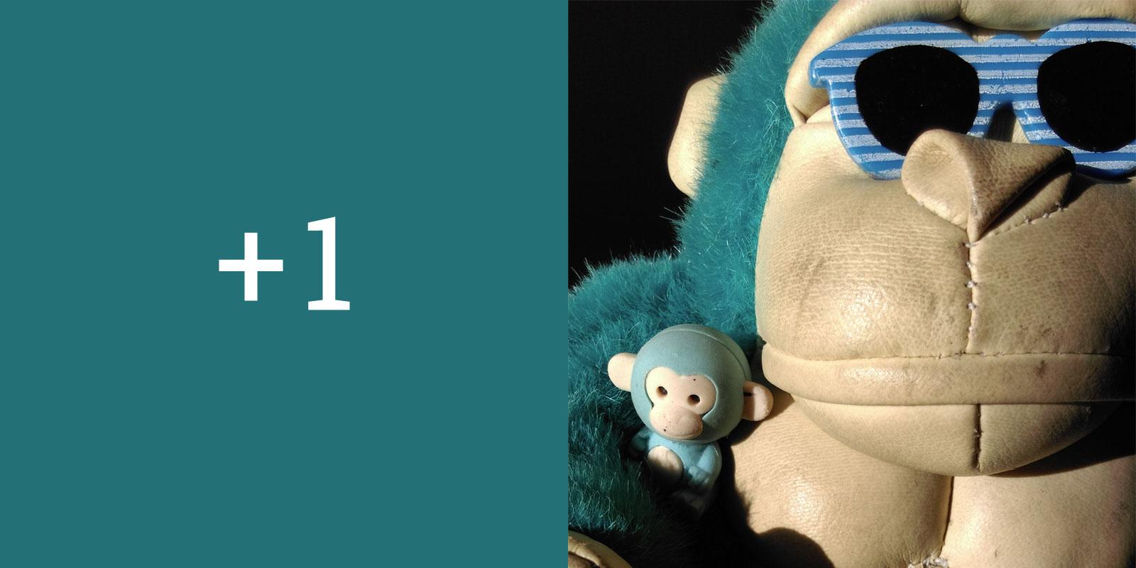 Blue Monkey Open Studios 2015 In Eastbourne Judith Alder